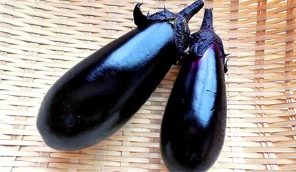 日本美食蔬菜烤茄子秋茄示意圖