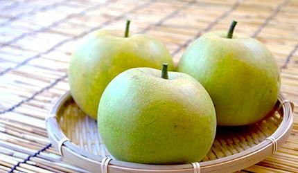 日本美食水果梨子秋梨示意圖
