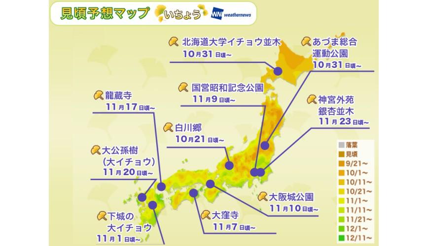 日本全國紅葉黃葉賞銀杏最佳時期預測前線