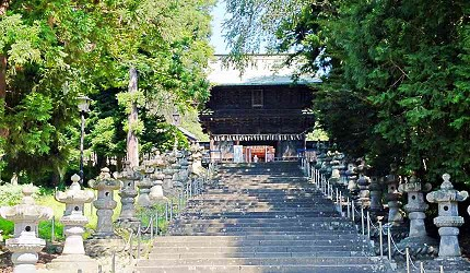 神社的參道與獻燈