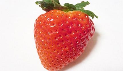 日本草莓愛莓示意圖