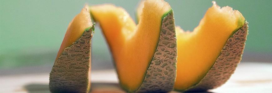 日本有名的哈密瓜