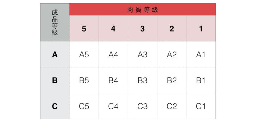 日本和牛国产牛A5A4黑毛和牛等级