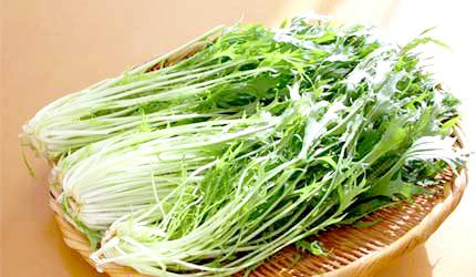 日本蔬菜水菜京野菜
