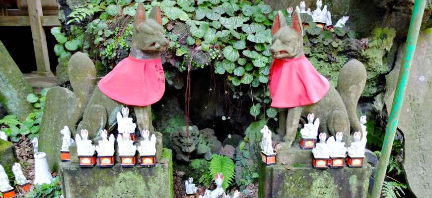稻荷神社的狐狸