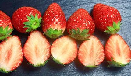日本草莓紅臉頰示意圖