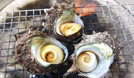 日本春天春季美食貝類螺肉蠑螺示意圖