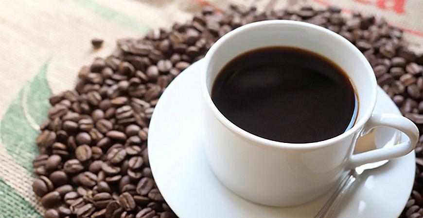 日本咖啡豆品種咖啡豆產地