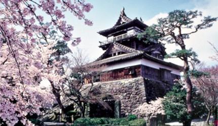 丸岡城因周圍的櫻花而有「霞城」之美名