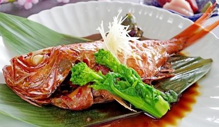 日文裡面10個常用日本諺語教學《動物篇》:鯛魚形象圖