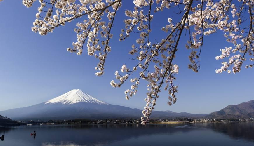 富士山河口湖巴士行程