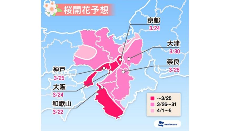 2019樱花最前缐,开花日满开日查询,日本赏樱weathermap关西地区