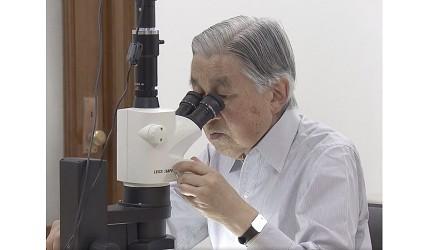 日本明仁天皇做研究的照片