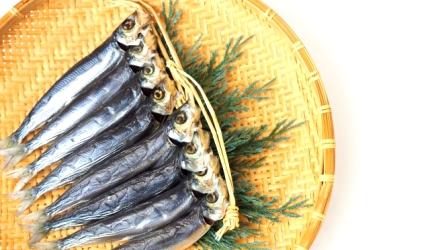 日本魚類漢字「鰯」(沙丁魚)的形象圖