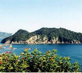 日本貓狗兔仔狐狸天鵝動物島的馬騮島九州東南部宮崎縣幸島上風景怡人