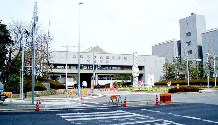 東京都內的生果批發市場大田市場