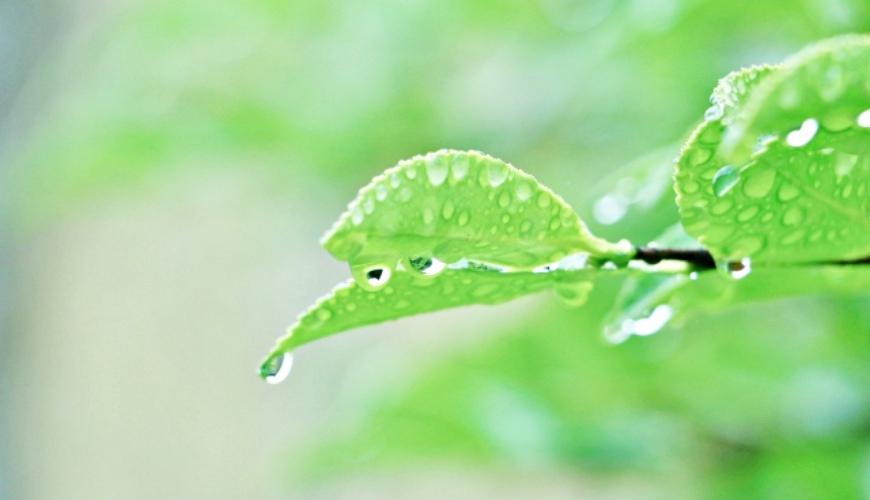 日本和製漢字「雫」的水滴形象圖