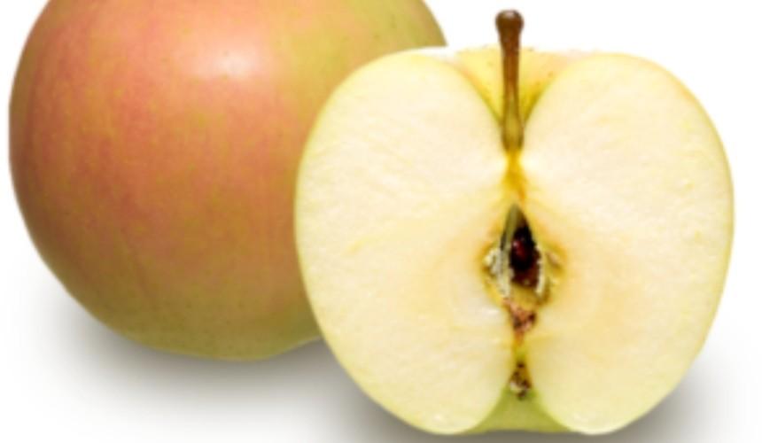 日本青森 TOKI 苹果
