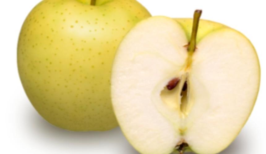 日本青森黄王苹果
