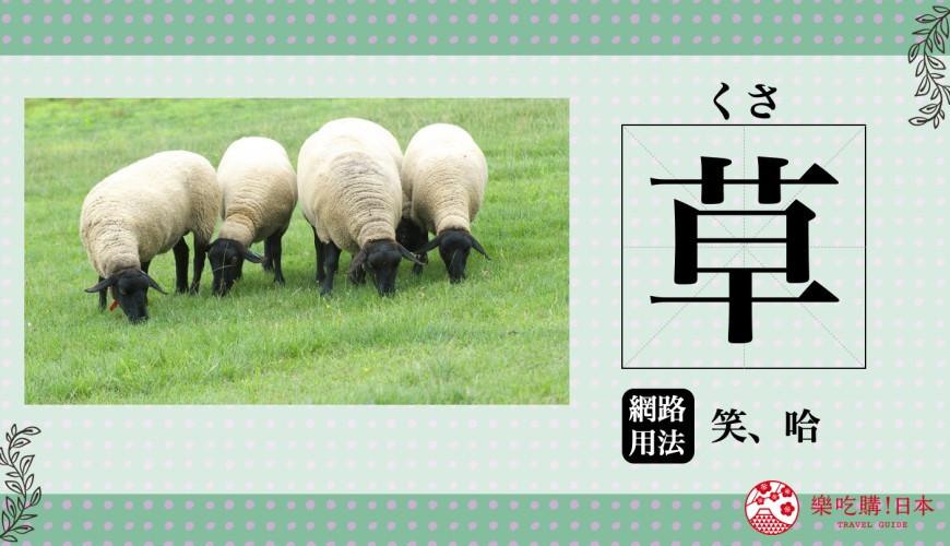 日本人推特 BBS 常用表達笑的「草」日語學習示意圖