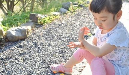日本必買防曬推薦10款面部全身都適用的高效持久隔離乳推薦文章內小孩在塗防曬用品