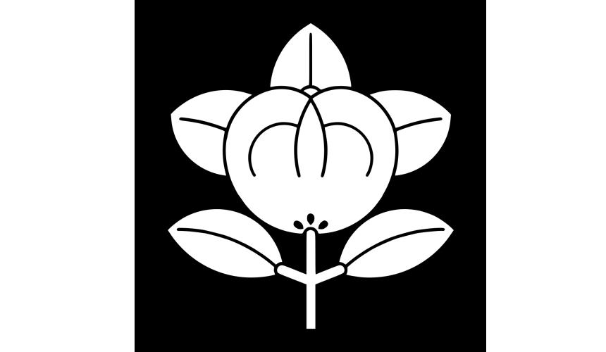 日本貴族姓氏橘氏家徽圖片