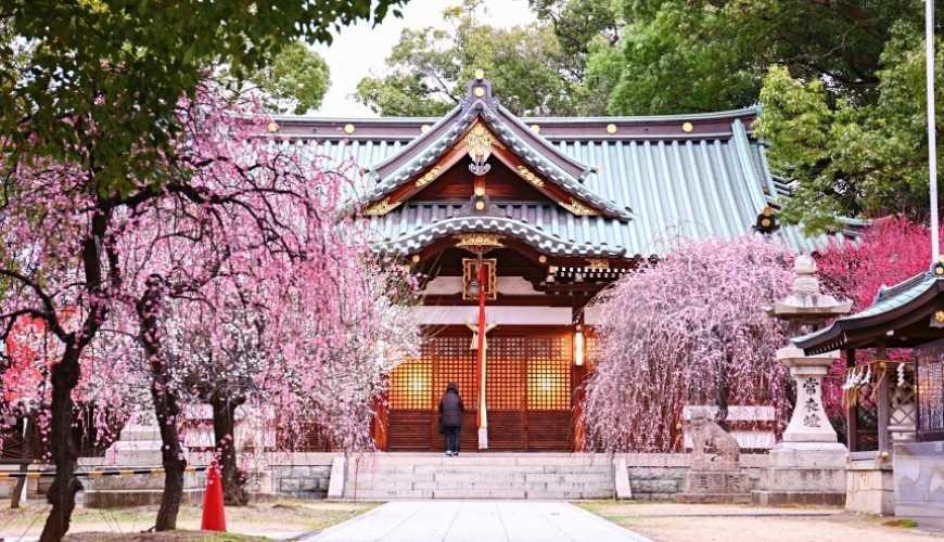 大阪自由行近郊一日遊行程推薦推介天王寺10分鐘直達松原市屯倉神社