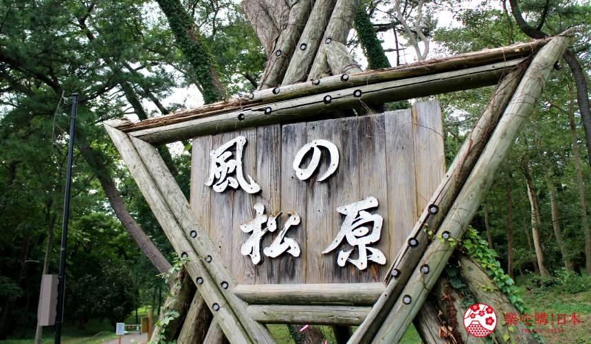 秋田必去療癒行程推薦推介白神山地櫸木林風之松原拍照景點