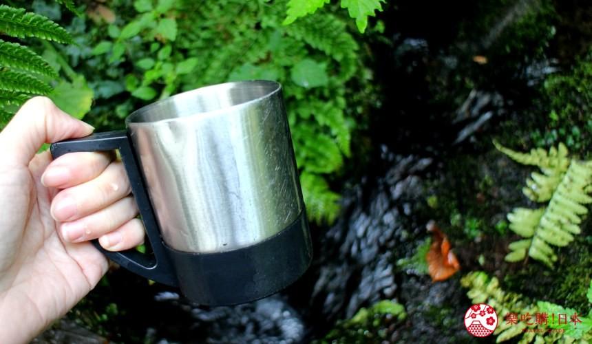 秋田必去療癒行程推薦推介白神山地櫸木林風之松原岳岱觀察林中的森之湧水區能喝到白神山地的清澈流水