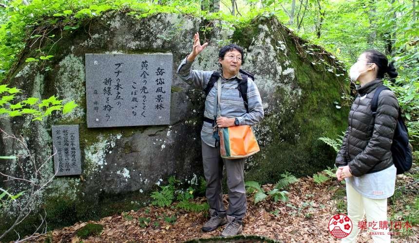 秋田必去療癒行程推薦推介白神山地櫸木林風之松原岳岱觀察林中在導覽的帶領下可以了解更多森林的知識