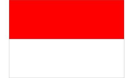 日本人也搞錯「世界國名代表字」的インドネシア(尼)印尼