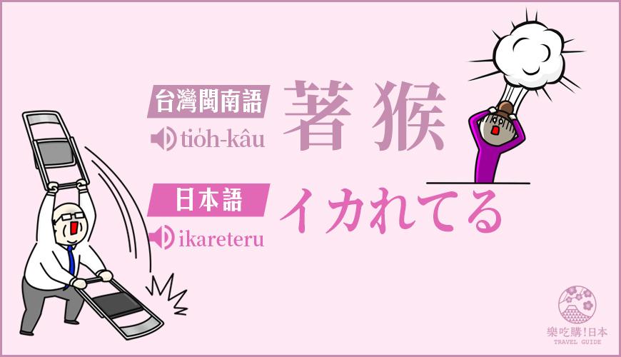 「著猴」(イカれてる)的台語與日語發音解釋示意圖