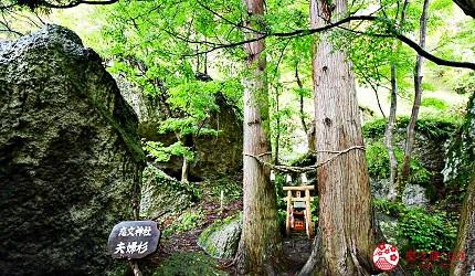 秋田2天1夜行程推荐推介绝美打卡景点白神山地散策疗癒周末小旅行屏风岩的夫妇杉