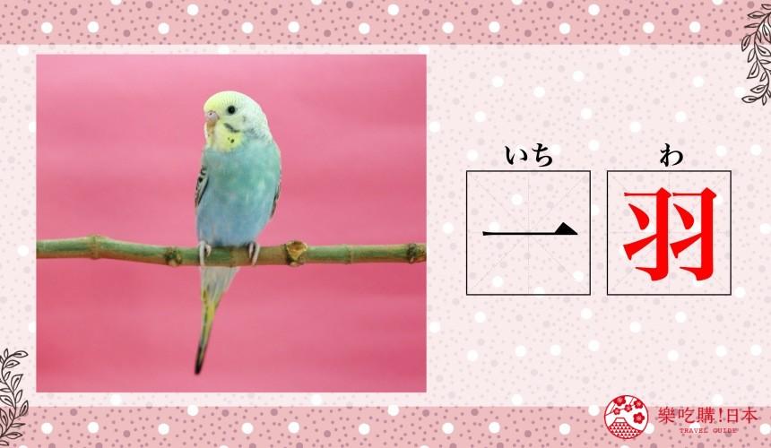 日语数量词鸟「一羽」示意图