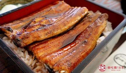 日本靜岡親子旅遊自由行必去景點推薦推介吉卜力夢幻森林空軍基地必吃美食鰻魚飯