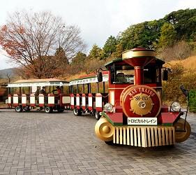日本靜岡親子旅遊自由行必去景點推薦推介吉卜力夢幻森林空軍基地果農園區免費小火車