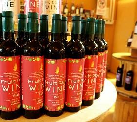 日本靜岡親子旅遊自由行必去景點推薦推介吉卜力夢幻森林空軍基地果農園區葡萄酒