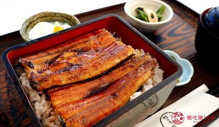 日本靜岡親子旅遊自由行必去景點推薦推介吉卜力夢幻森林空軍基地航空鰻魚派製作工廠鰻魚飯