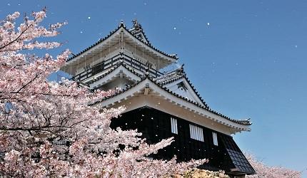 日本靜岡親子旅遊自由行必去景點推薦推介吉卜力夢幻森林空軍基地航空濱松城櫻花