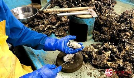 新潟旅行冬天自由行程景點推薦推介的佐渡加茂湖現剝現吃牡蠣生蠔