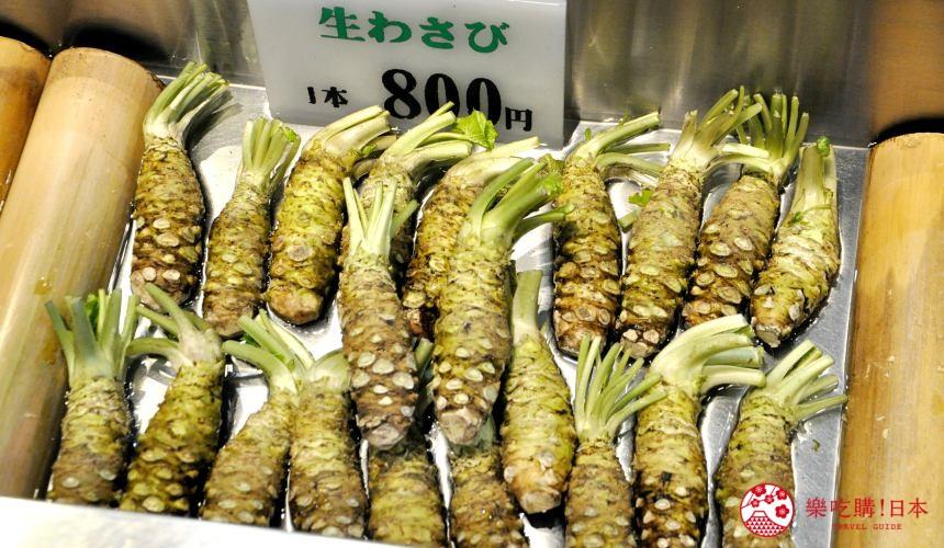 長野自由行松本安曇野景點大王山葵農場中販售的新鮮生山葵