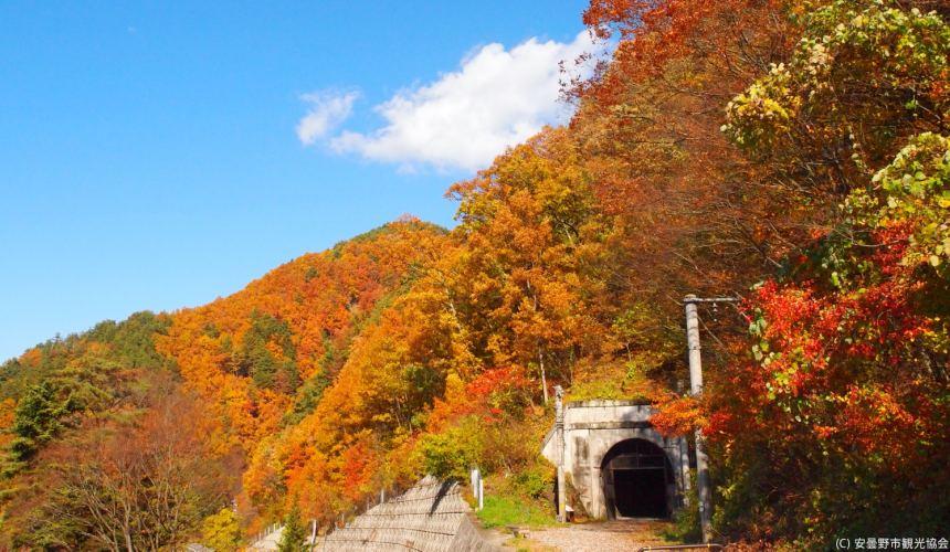 長野自由行松本安曇野景點篠之井線廢線遊步道秋天紅葉景象
