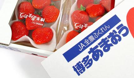 草莓禮盒推薦新年送禮