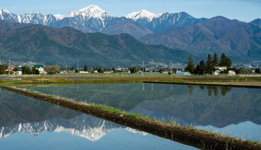 東京出發2.5小時!長野縣秘境「安曇野」,一訪北阿爾卑斯山鄉村小鎮的悠閒與慢活