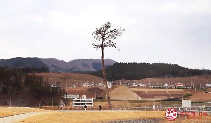 日本東北自由行宮城岩手景點推薦岩手海嘯紀念館道奇蹟的一棵松樹