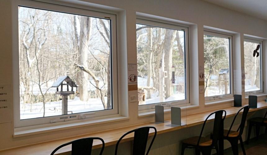 北海道自由行冬天推荐玩法6个札幌近郊景点推荐千岁市咖啡厅THEBIRDWATCHINGCAFE窗外风景