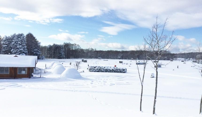 北海道自由行冬天推荐玩法6个札幌近郊景点推荐惠庭LuluMap自然公园SnowLandRuruMap
