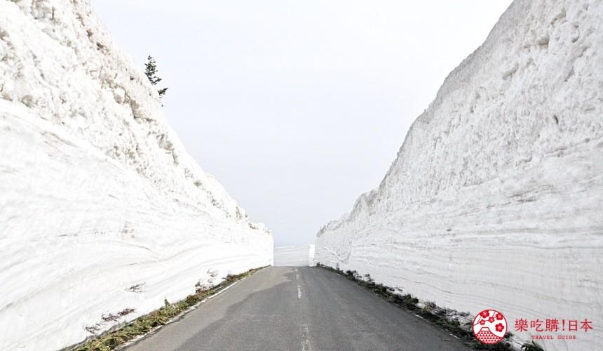 東北青森自由行景點推薦八甲田雪之迴廊雪壁迴廊