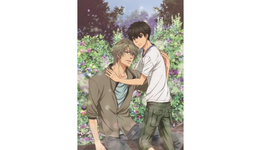 推薦日本9部必看BL經典動畫清單整理劇情介紹台灣看得到超級戀人第一季第二季
