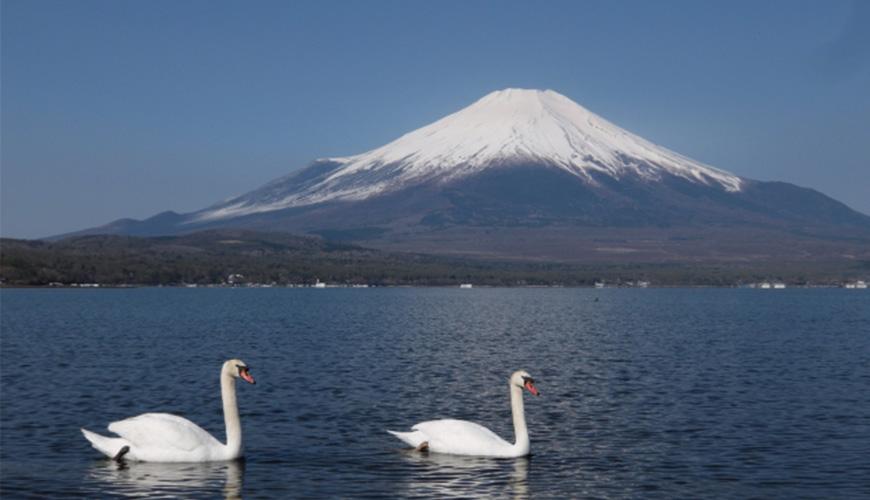 2021富士山開山